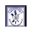 Acélpajzs Vagyonvédelmi Őrző-Védő Kft. - Kőbánya, Maglódi út