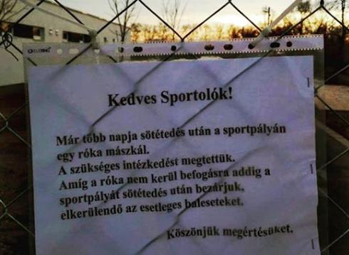 Figyelmeztetés a sportolóknak (fotó: Kertész Z István)